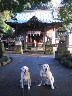 20080207_sanpo_00032.jpg