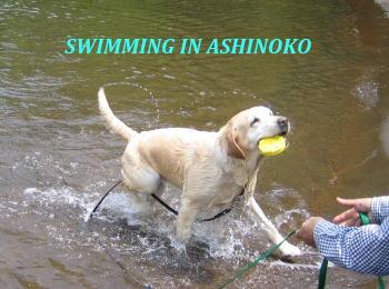 ashinokochanmoji1.jpg