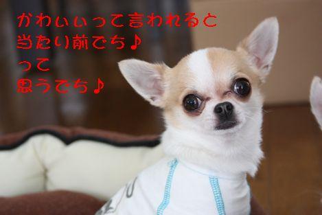 IMG_26810.jpg