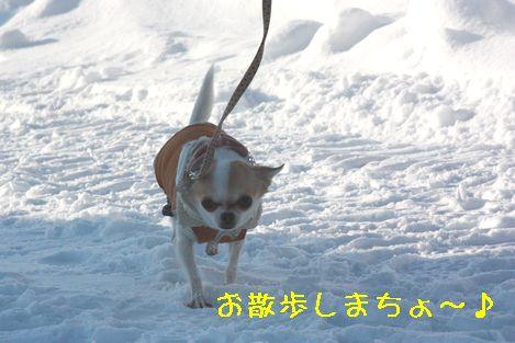 IMG_29380.jpg