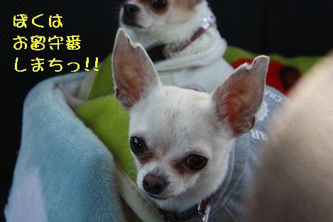 IMG_297700.jpg