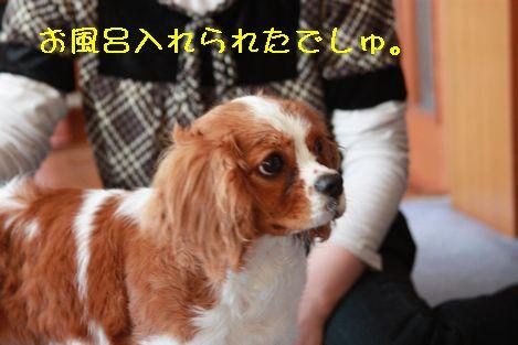 IMG_39000.jpg