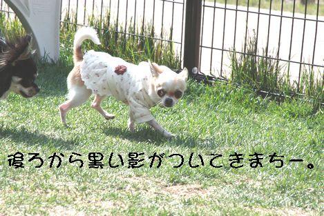 IMG_5238.jpg