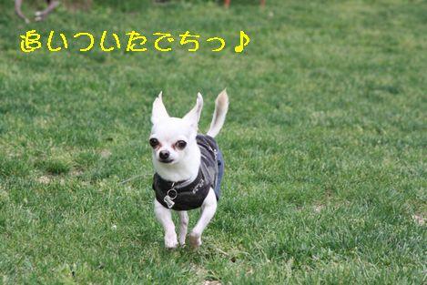 IMG_5304.jpg