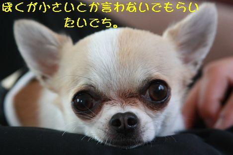 IMG_5354.jpg
