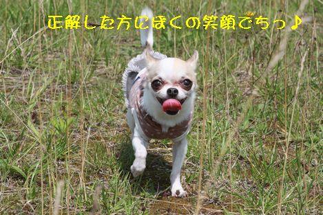 IMG_76010.jpg