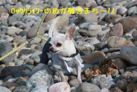 IMG_7918.jpg