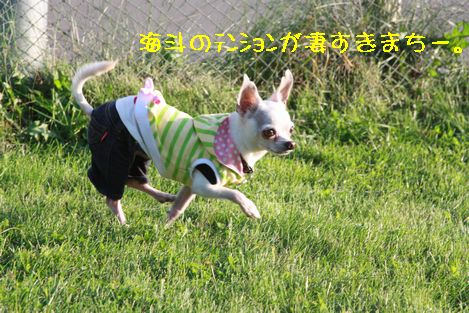 IMG_80210.jpg