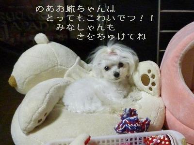 いじわる6