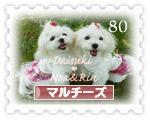 daisuki_noa_rin.jpg