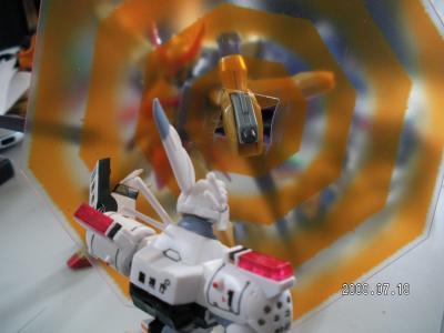 RIMG0889_convert_20090719195947.jpg