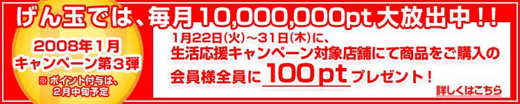 100pt2.jpg