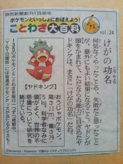 vol.24_けがの功名_ヤドキング_4.11
