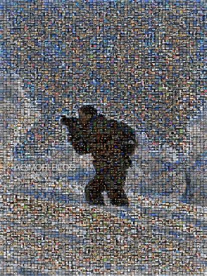 P3033721-1 Mosaic08_02