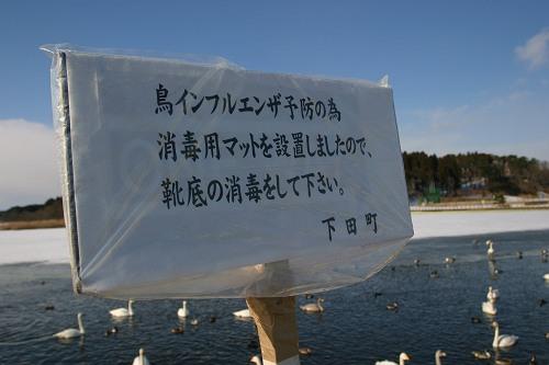IMG_6735-x.jpg