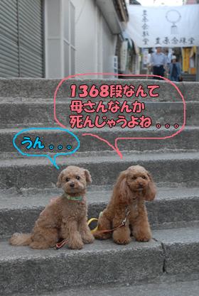 080604-17.jpg