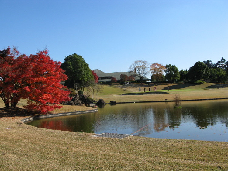 IMG_0110ゴルフ
