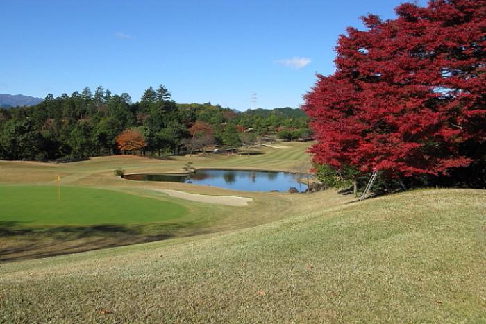 IMG_0108_1JPGゴルフ
