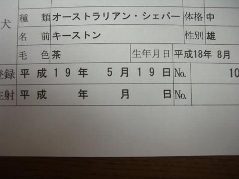 コピー ~ CIMG8016