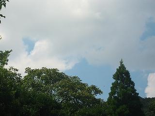 空H20.8.24