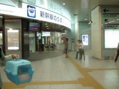 新神戸に到着しました。おわかれ間近です。