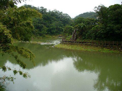 基隆河沿いの渓流