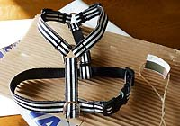 harness-1.jpg