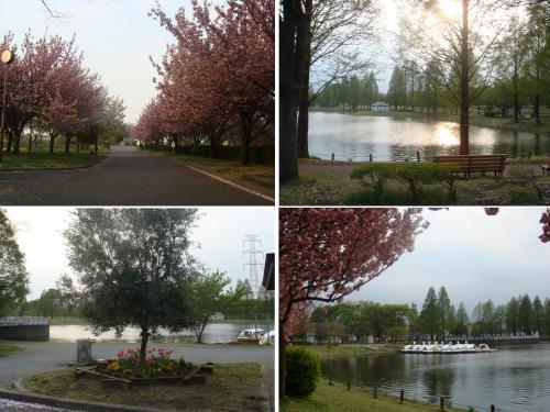 水上公園2