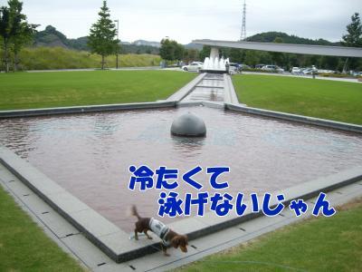 IMGP5195_convert_20081006121524.jpg