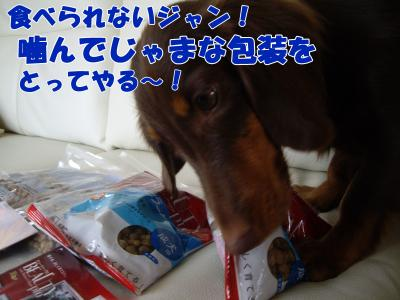 IMGP5381_convert_20081028110149.jpg