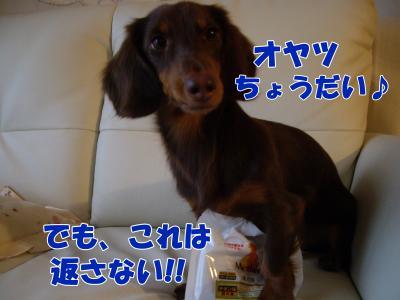 IMGP5505_convert_20081031165223.jpg