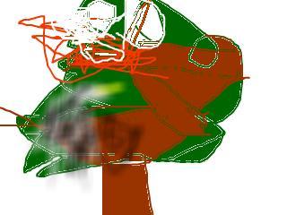 snap_7033nayomi_200974201013.jpg