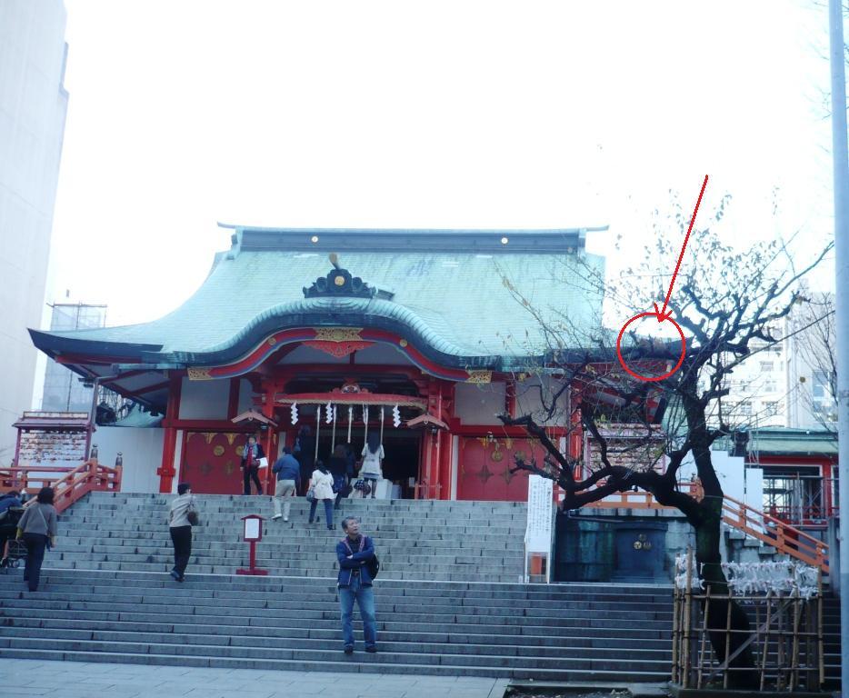 花園神社4