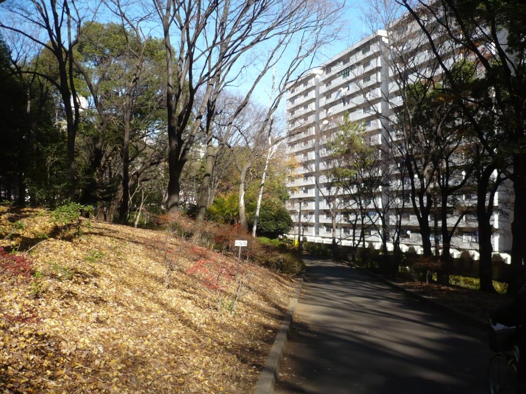 戸山公園1