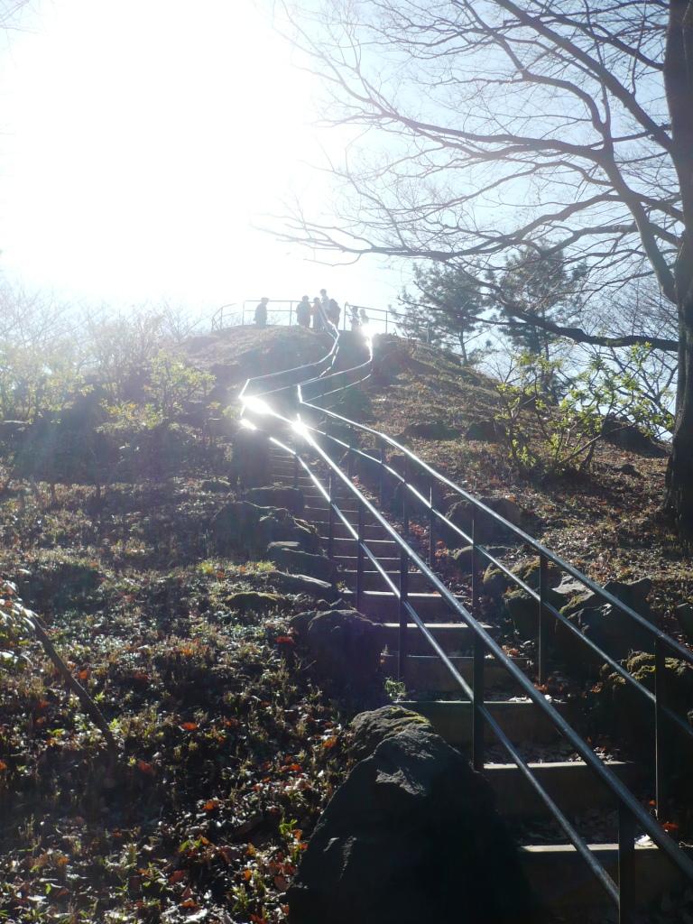 箱根山登山道