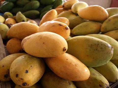 市場の完熟マンゴー