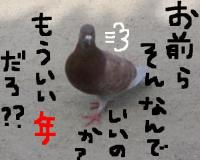 20060502003553.jpg