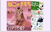 cat_img2.jpg