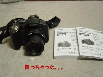 DSC02465-1.jpg