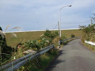 勝浦ダムへの登り