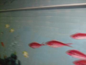 水族館トンネル