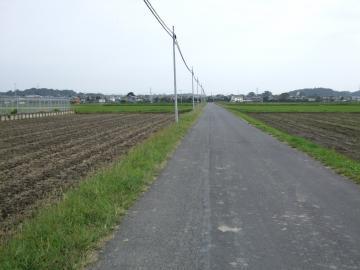 田舎道をさまよう