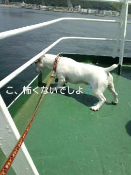 PAP_0023_20090527184257.jpg