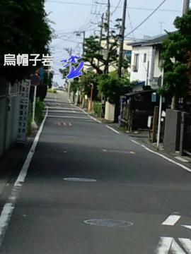 PAP_0091.jpg