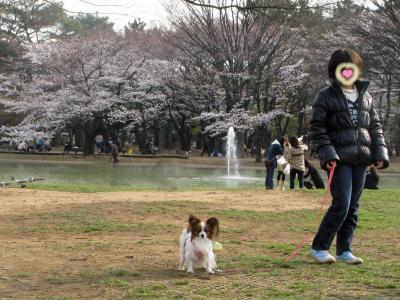 代々木公園で