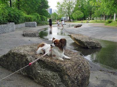 天王洲公園で