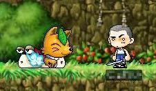 きのこ村に狐