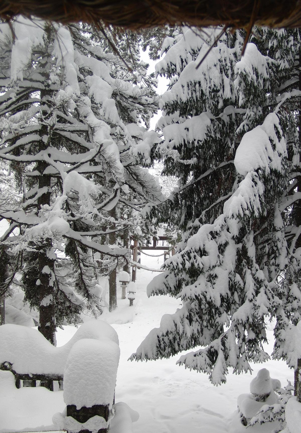 白馬と諏訪旅行2009年12月17日から20日 213