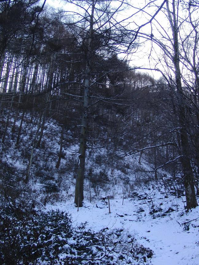 白馬と諏訪旅行2009年12月17日から20日 472