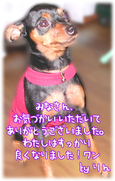 20050721_01s.jpg
